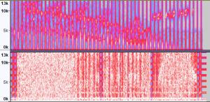 misja016 wave spektrogram audacity 21