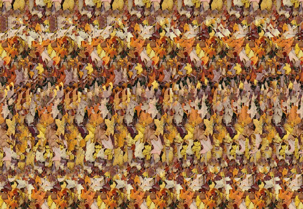 autostereogram-wall-eyed